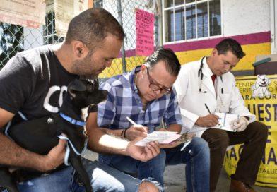 Con 164 puestos fijos, inicia SSM Semana Nacional de Vacunación Antirrábica