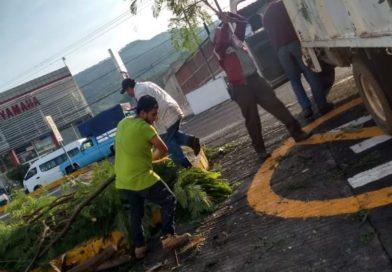 Jornada de limpieza en Los Reyes